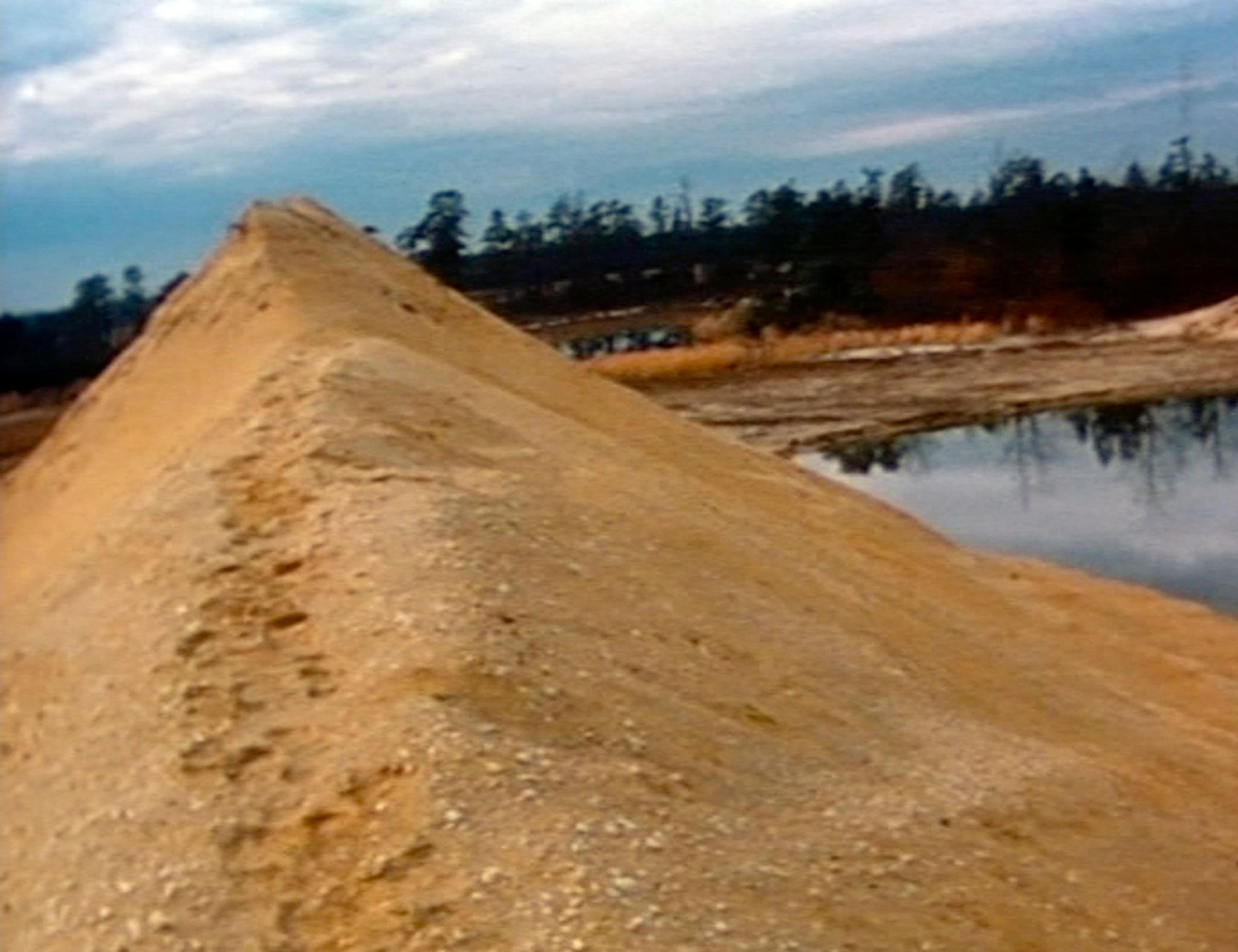 A still image of a mound of earth in Pine Barrens, New Jersey.